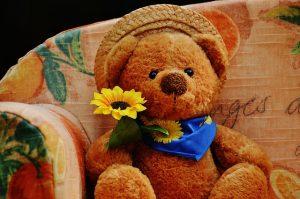 bear-792461_640